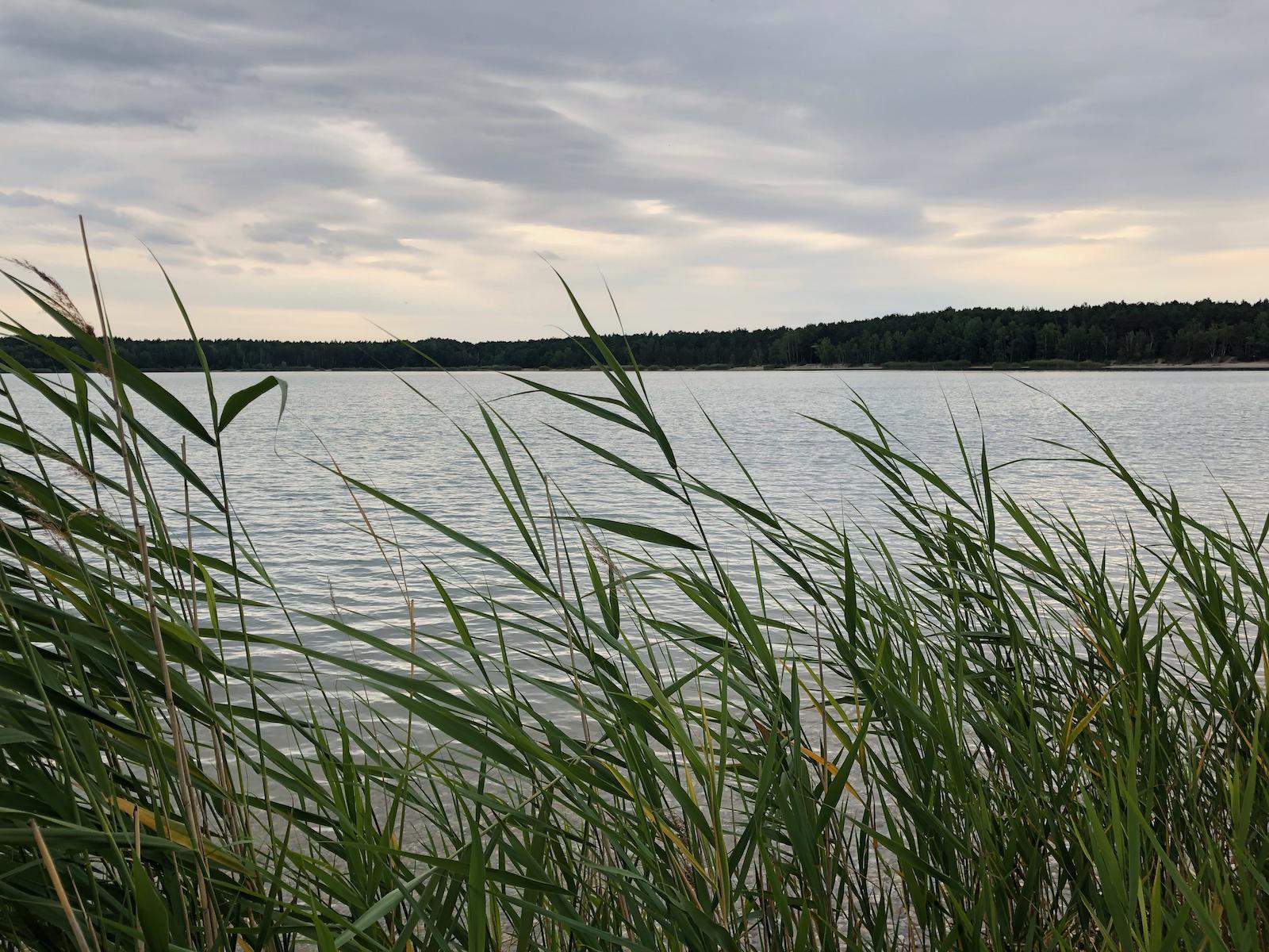 Letzter Abend am Naunhofer See