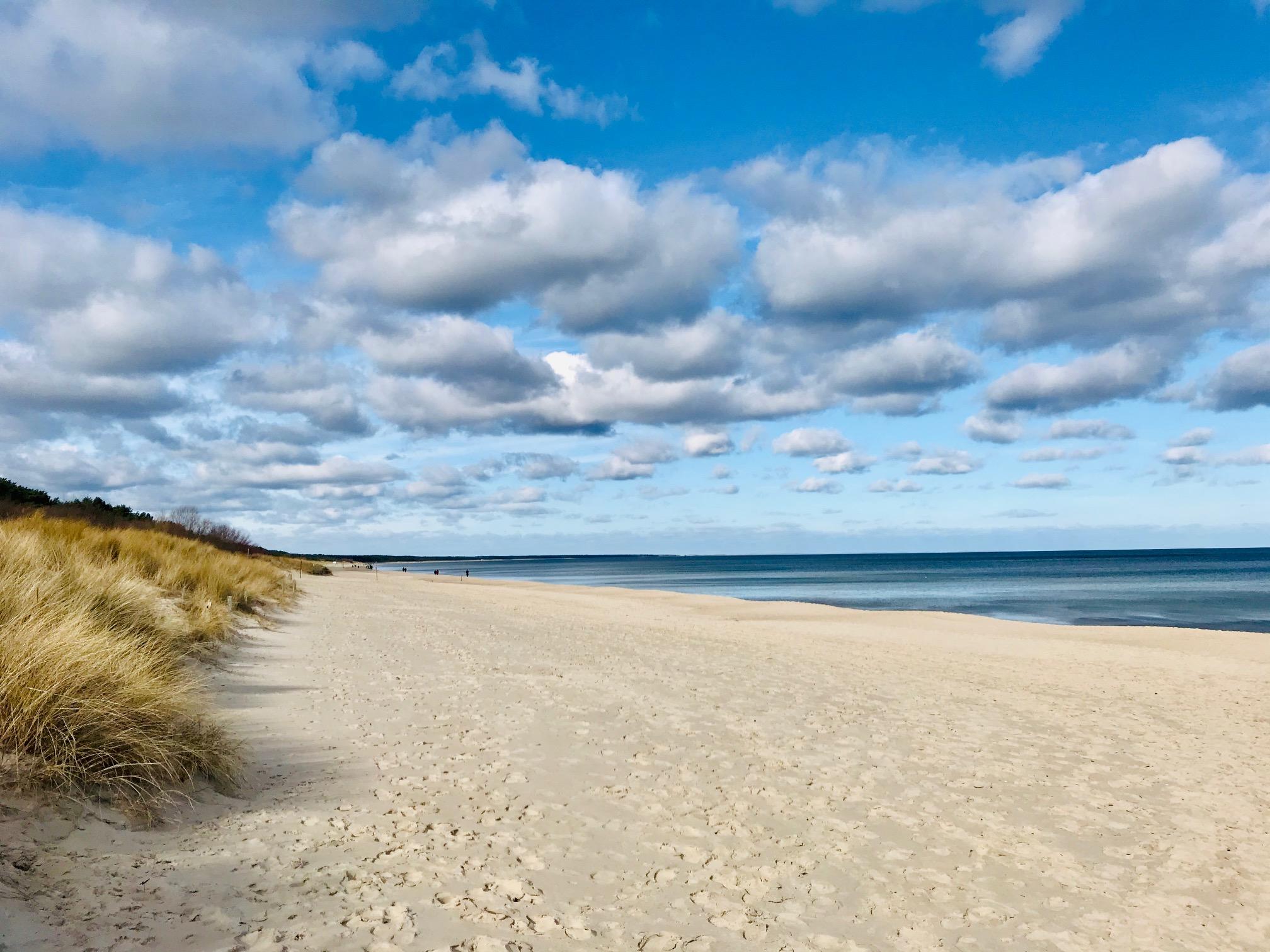 Feriendorf Strandkiefer – Urlaub an der Ostsee !