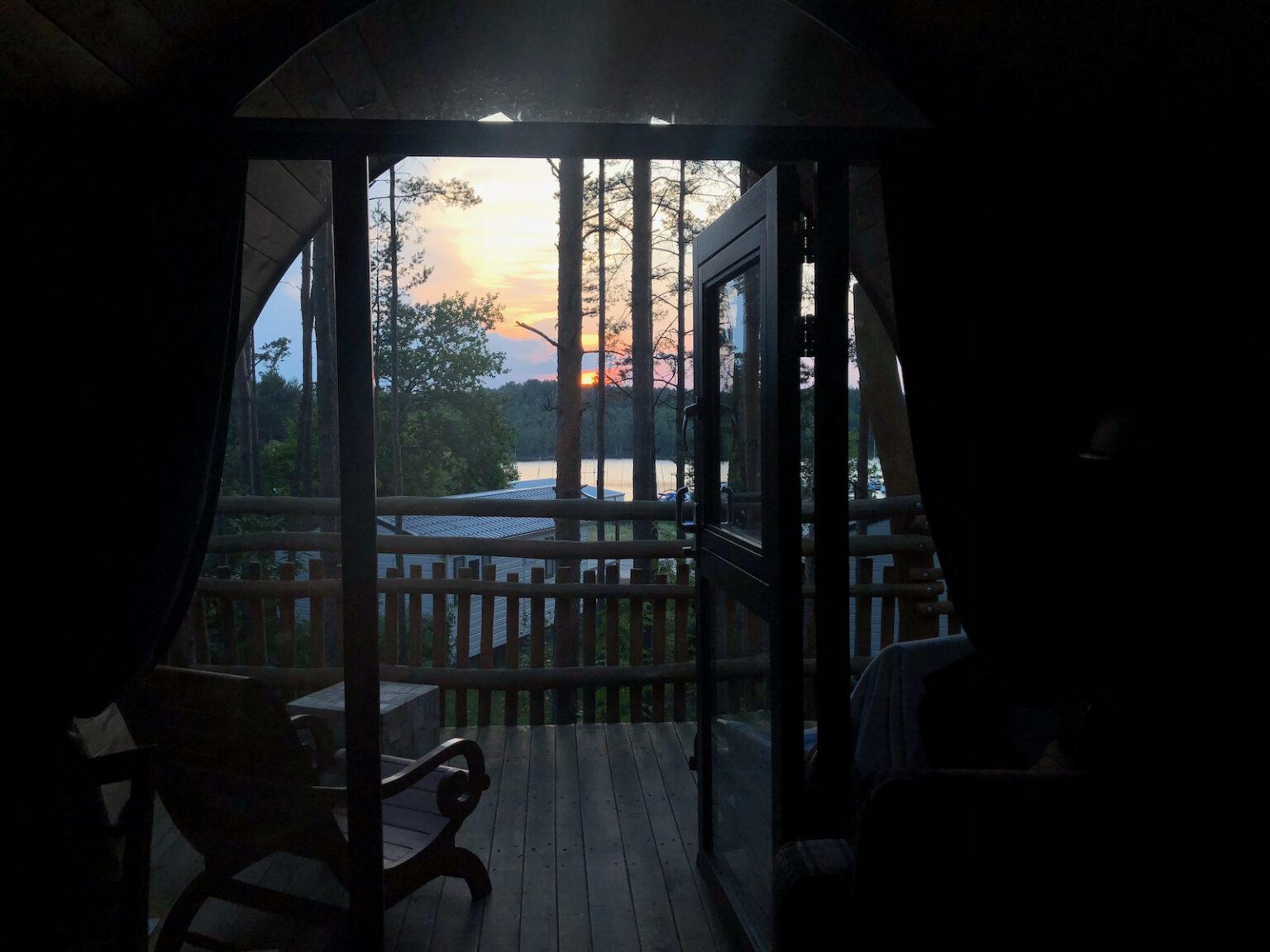 Sonnenuntergang in den Baumwipfeln am Senftenberger See